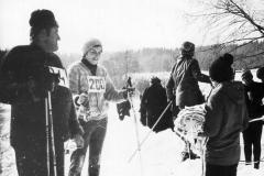 1984. gads Apkārt Alaukstam