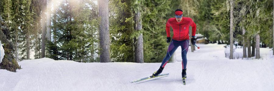 Distanču slēpošana